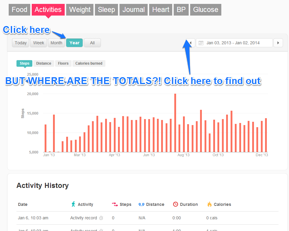 Fitbit activity without totals