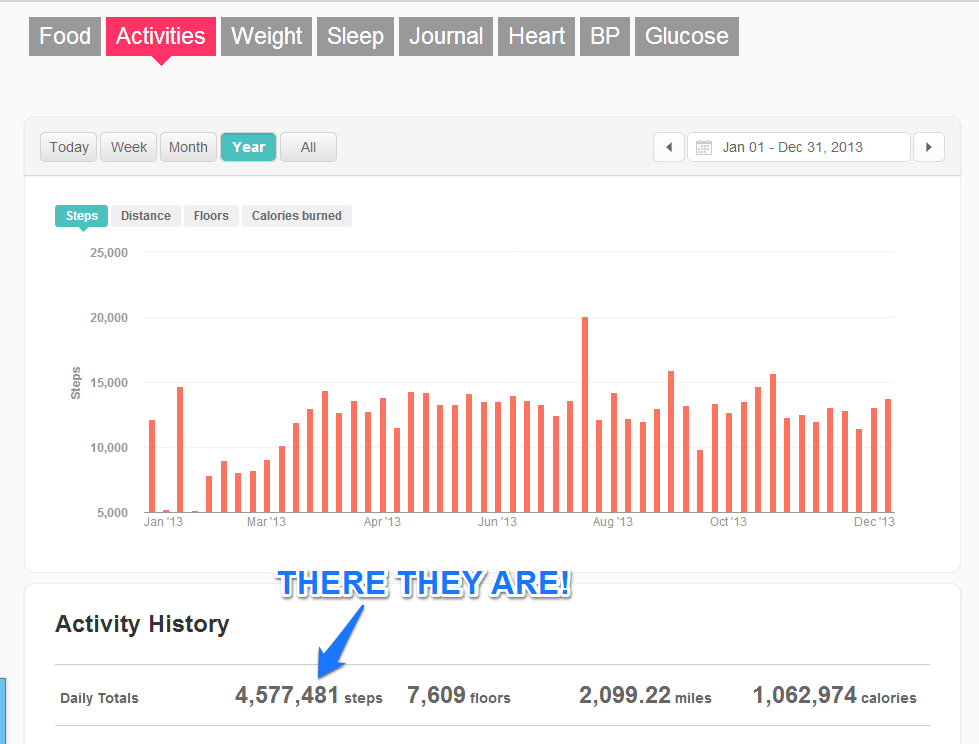 Fitbit activity with totals