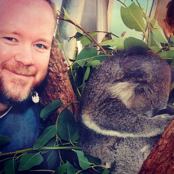 ruby_the_koala